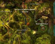 Gw2 auric basin insight burnisher quarry