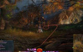 gw2-chicken-run-guild-rush-3.jpg