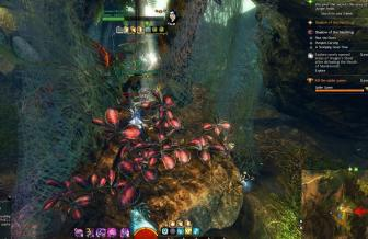 Gw2 dragons stand spider nest hero point 2