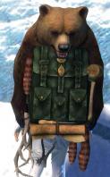 Gw2 elegant leatherworkers backpack