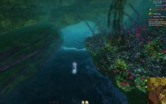 Gw2 guano incubed spider eggs hero point tangled depths 4