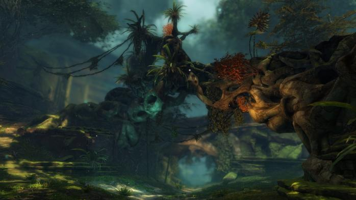Gw2 heart of thorns jungle floor