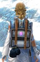Gw2 intricate jewelers backpack 2