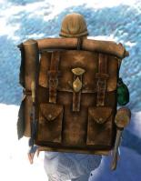 Gw2 intricate leatherworkers backpack 2