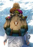 Gw2 intricate tailors backpack 2