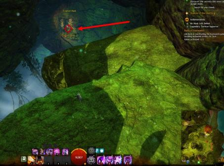 Gw2 no masks left behind achievement guide bristleback chasm 2