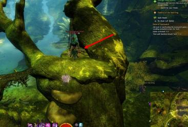 Gw2 no masks left behind achievement guide bristleback chasm 3
