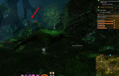 Gw2 no masks left behind achievement guide chak hollow 4