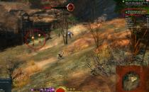 Gw2 no one left behind gates of maguuma achievement guide