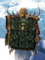 Gw2 ornate leatherworkers backpack