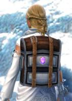 Gw2 practical jewelers backpack