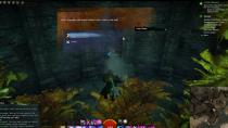 Gw2 rhand blessed plant food 4
