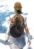 Gw2 simple chefs backpack