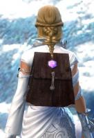 Gw2 simple jewelers backpack