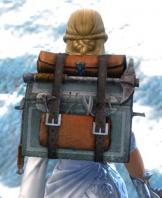 Gw2 sturdy armorsmiths backpack