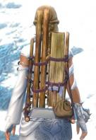 Gw2 sturdy huntsmans backpack 2