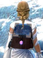 Gw2 sturdy jewelers backpack 2