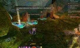 Gw2 tangled depths insight order of whispers outpost 3