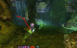 Gw2 tangled depths strongbox from the cryptonym 2