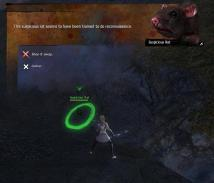 gw2-yanonka-the-rat-wrangler-fields-of-ruin-map-2.jpg