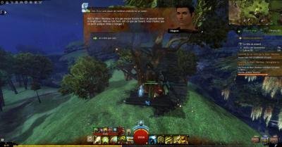 Homme dans arbre compressed
