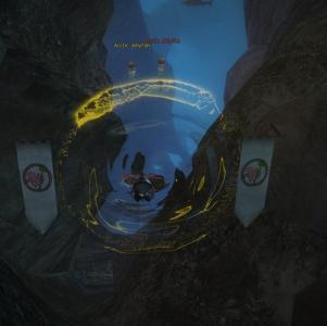 gw2-quaggan-paddle-guild-rush-2.jpg