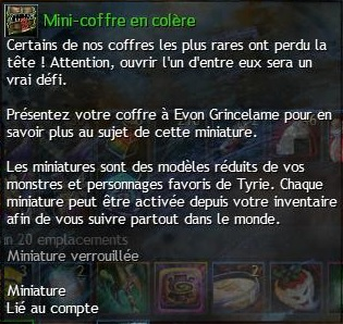 Mini coffreencolere